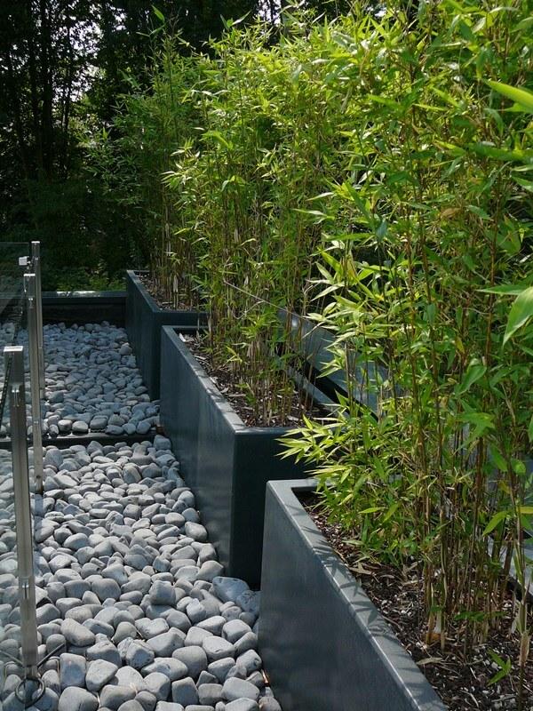 bacs de bambous